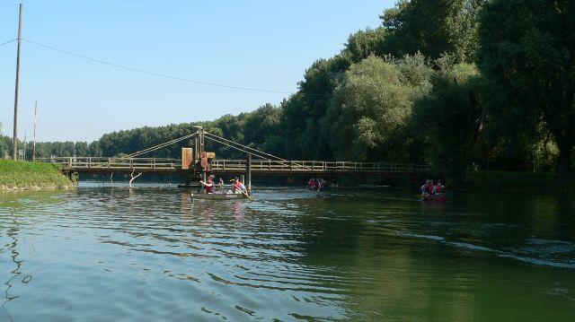 Kanu fahren Insel Rott Altrhein